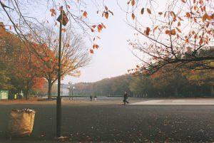 morning_park